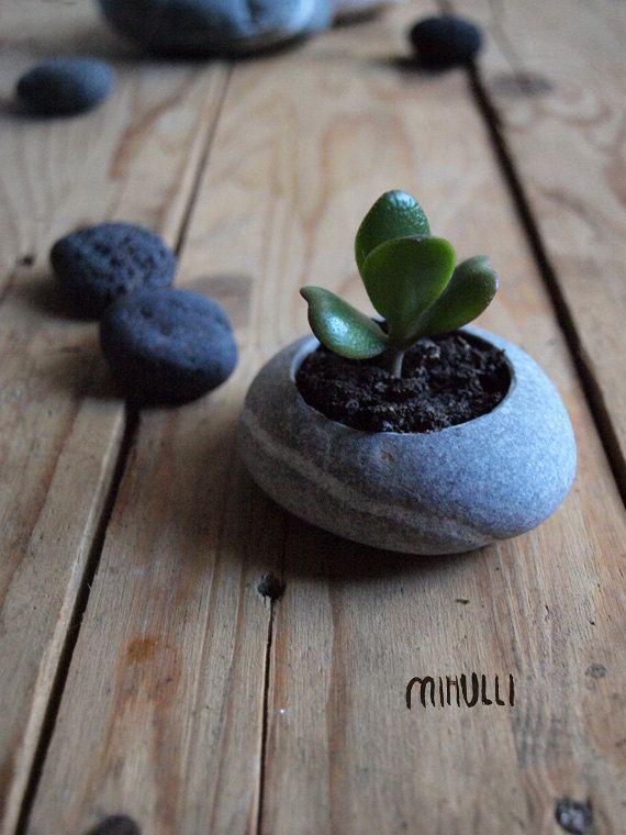miniature planter  handmade  hand engraved sea pebble  by Mihulli