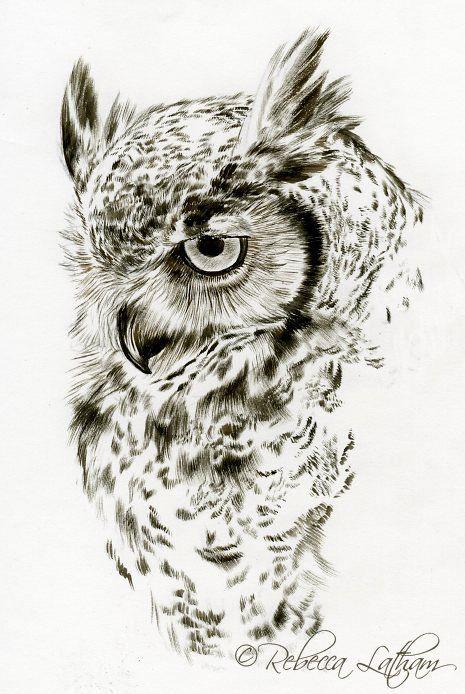 google pinterest owl art owl drawings. Black Bedroom Furniture Sets. Home Design Ideas
