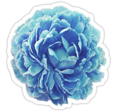 Cinderella Blue Flower Sticker By Royal Sass In 2021 Floral Stickers Blue Flower Wallpaper Tumblr Stickers