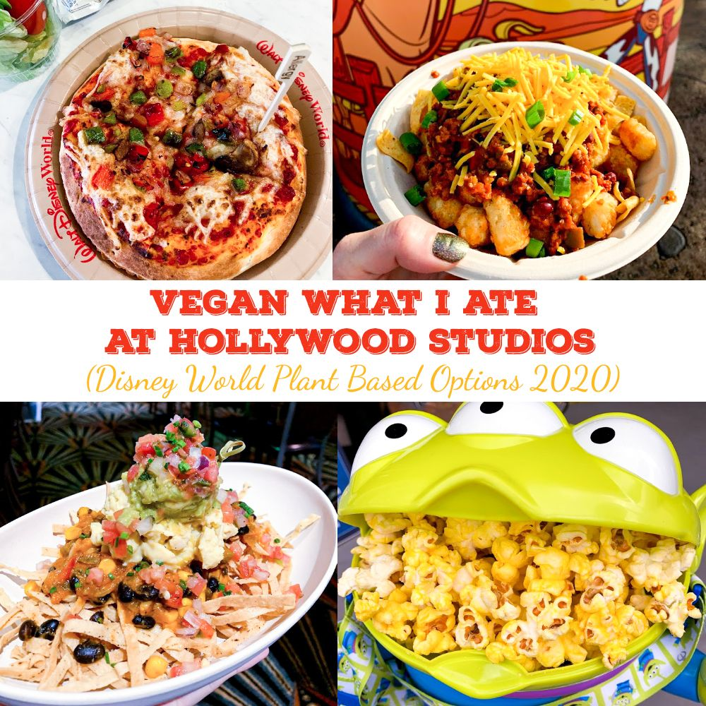 Vegan What I Ate At Disney World Hollywood Studios In 2020 Disney World Food Vegan Disney World Food