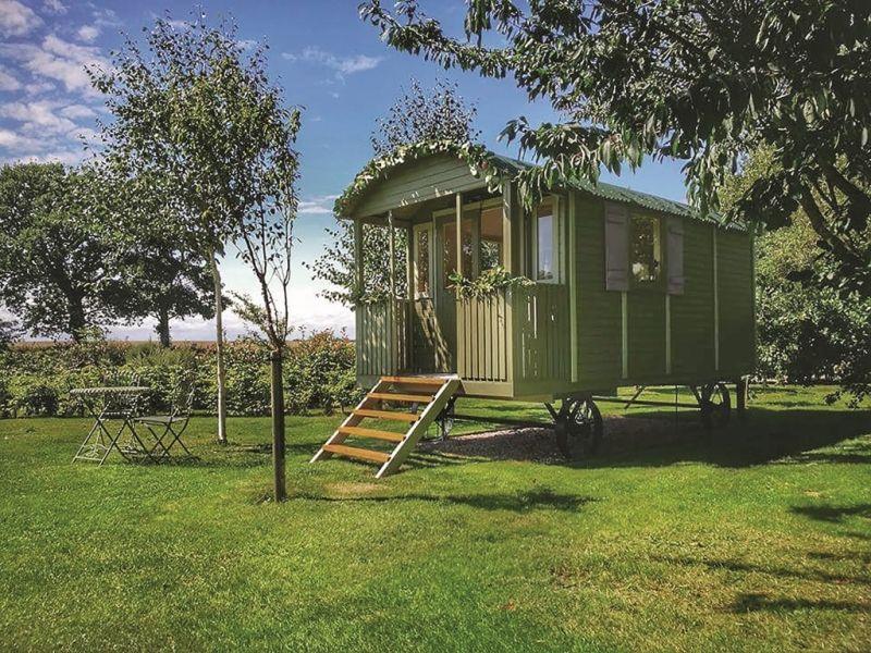 HolzBauwagen mit Veranda House styles, Outdoor