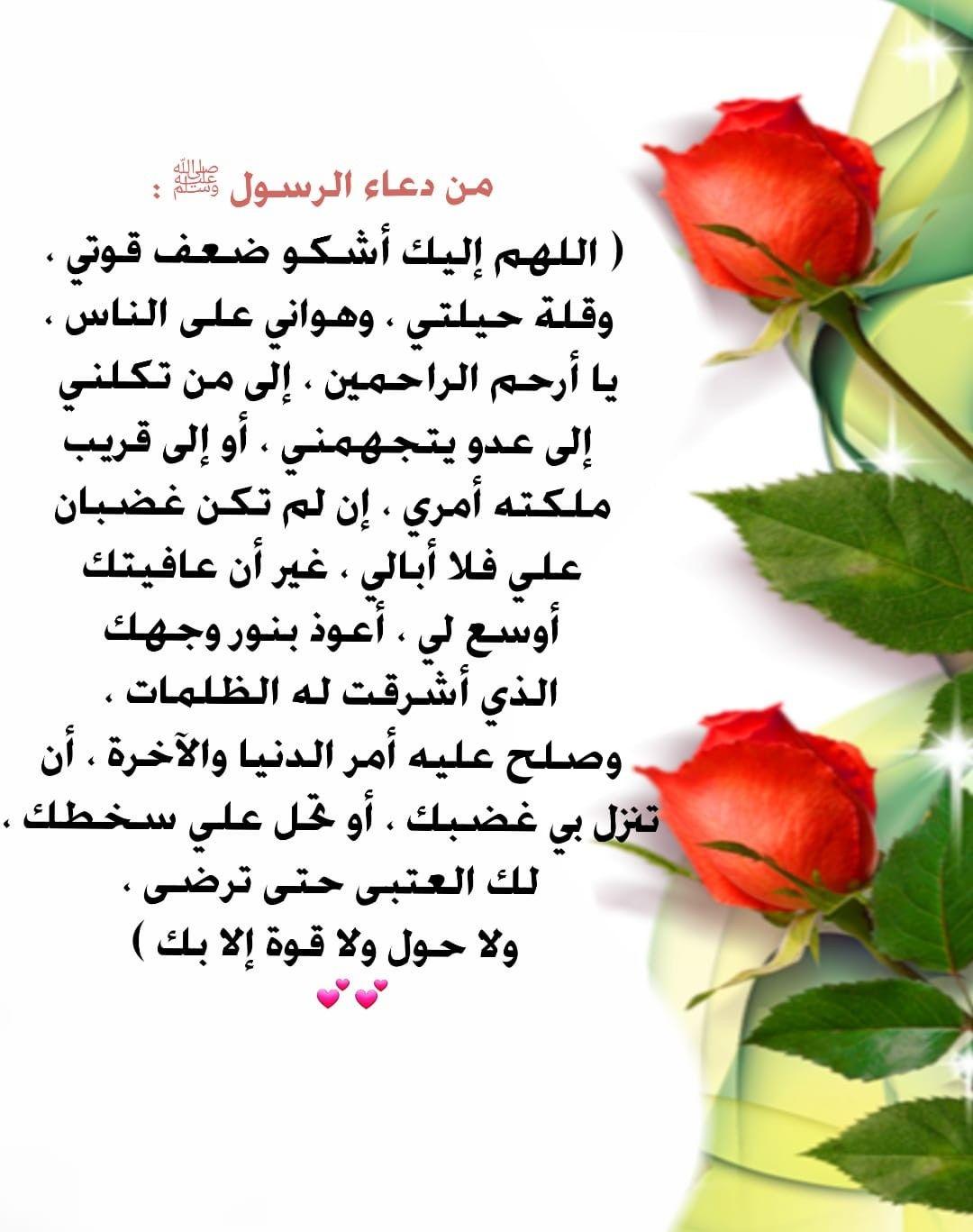 Pin By Eman Duniya On عربي رسائل من تصميمي Vegetables Radish Food
