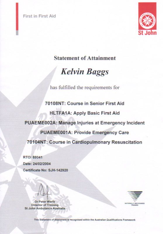 Standard First Aid Certification First Aid Pinterest - pay certificate sample