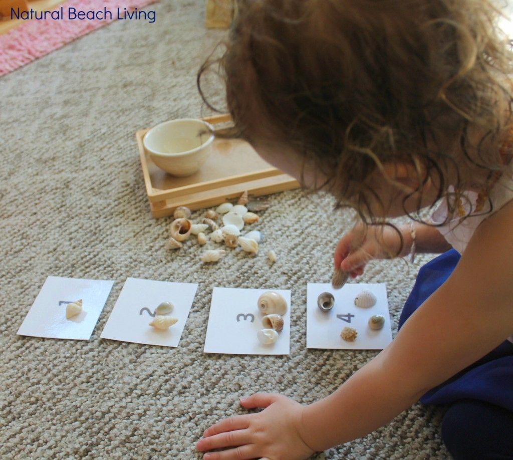 The Best Under The Sea Preschool Activities