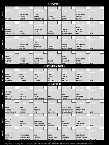 Licensing Propagate 7 of 8 Insanity workout calendar, Workout