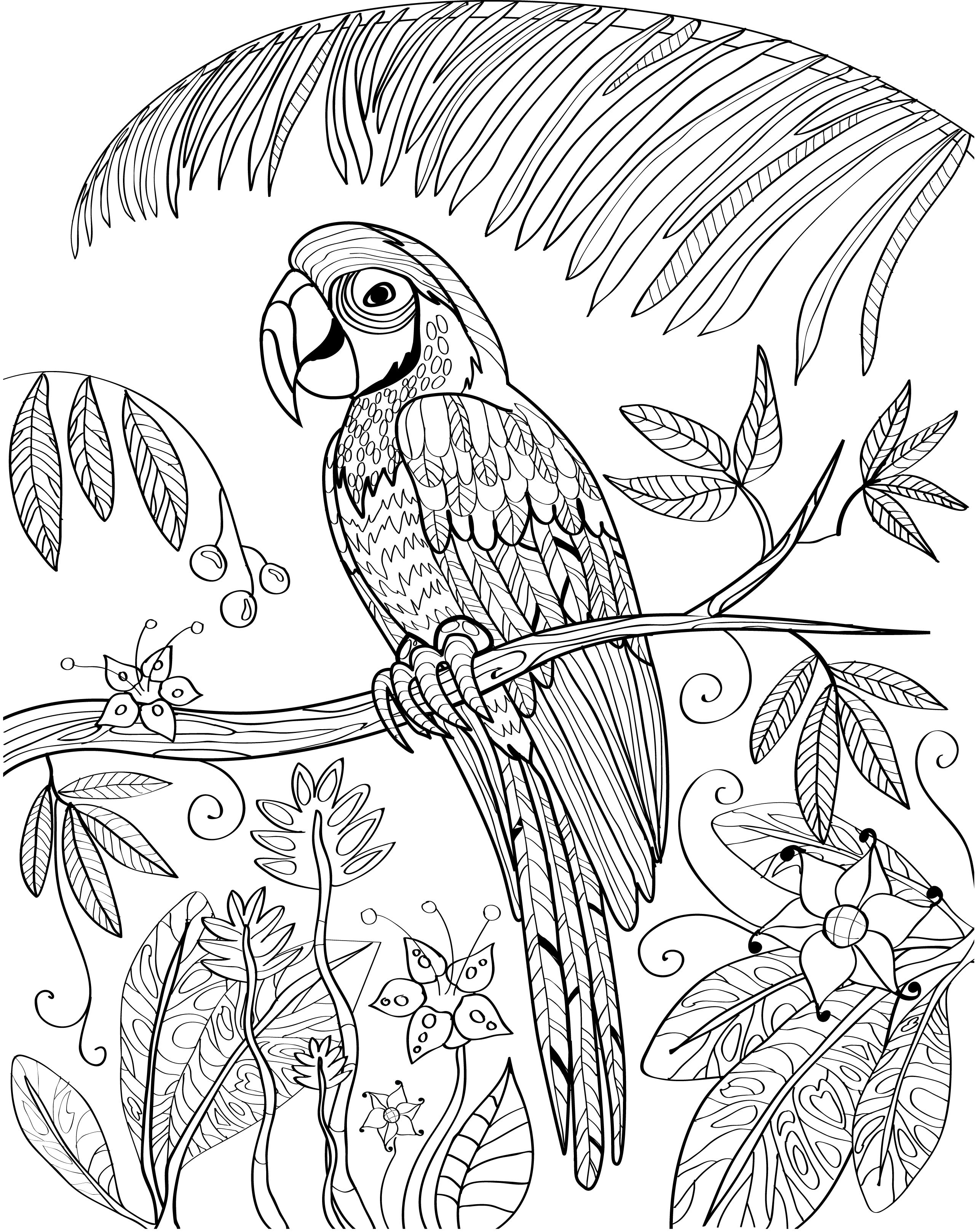 free adultcoloringbook bird tropical macaw parrot