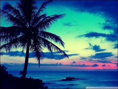 Beautiful Tropical Islands At Sunset