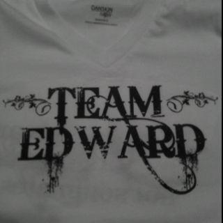Twilight shirt I made