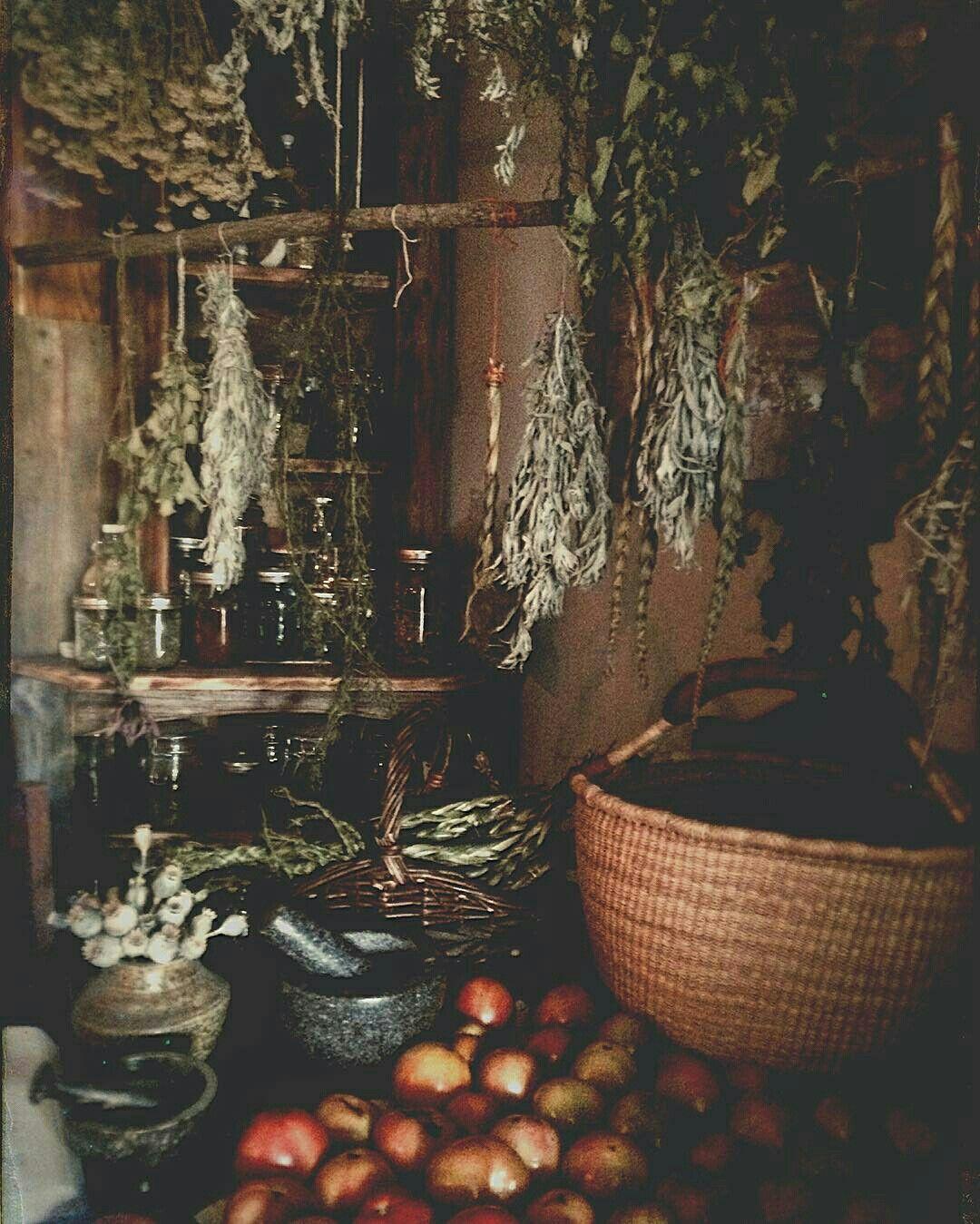 acahkosiskwew instagram | **Hedgewitch garden* | Pinterest ...