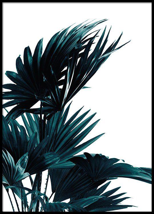 Poster mit botanischem Motiv   Gemälde   Pinterest   Poster mit ...