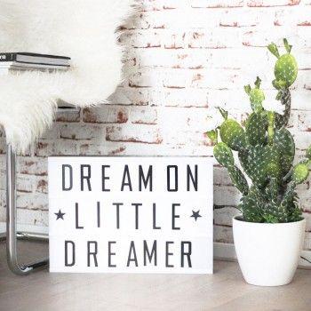 textboard | dream on little dreamer | cactus