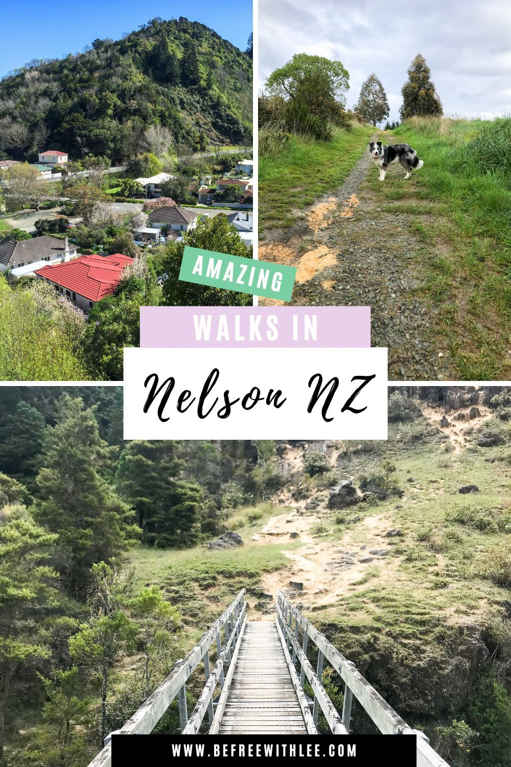 Planning your New Zealand travel itinerary? These 4 short walks in Nelson should be on your list! Nelson is one of the best travel destinations in New Zealand for the incredible scenery and vibrant atmosphere. Make sure to add this New Zealand South Island spot to your list of must see spots in NZ! P.s Whispering Falls is one of my favourite New Zealand photography spots! #nztravel #southislandnz #nzhiking