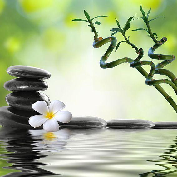 tableaux zen tableaux pas cher orchid e spa bouddha. Black Bedroom Furniture Sets. Home Design Ideas