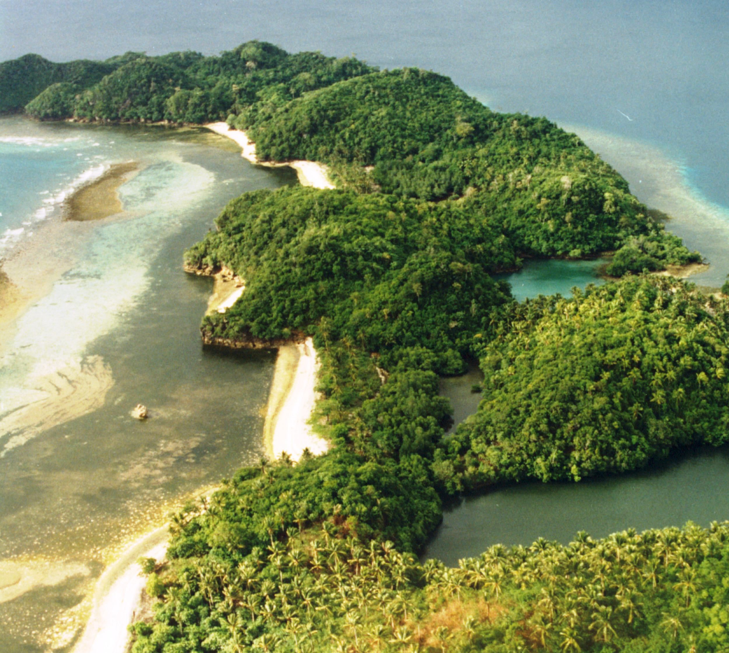 Read about how WLT helped to protect the beautiful Danjugan Island. Photo WLT.