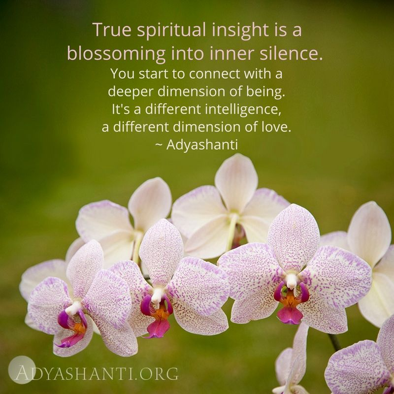 True spiritual insight is a blossoming into inner silence. You start to connect with a deeper dimension of being. It's a different intelligence, a different dimension of love. ~ Adyashanti