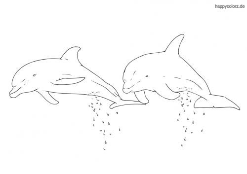 delfinpaar ausmalen  zootiere ausmalen giraffe