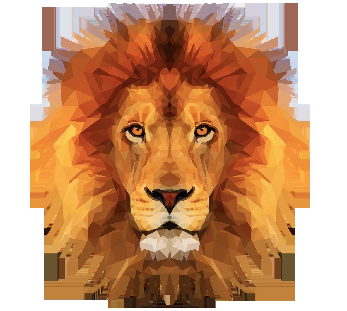 Emmasimoncictumblrcom Low Poly Lion Illustration Head Art