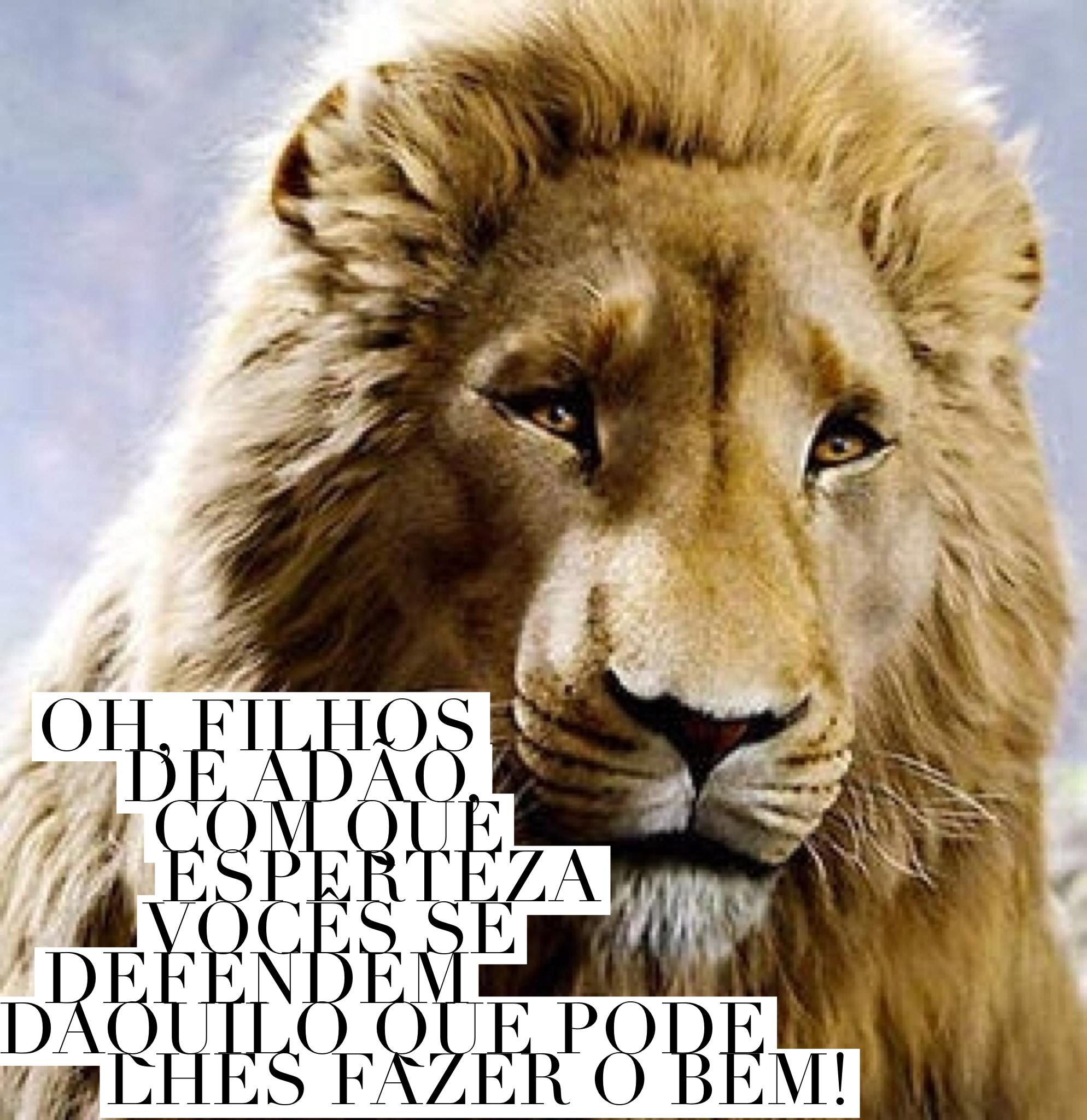 Nárnia; frases | Narnia | Pinterest | Autoestima y Frases