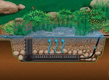 Bog filtration wetland filtration plant filters monmouth for Koi pond pool filter