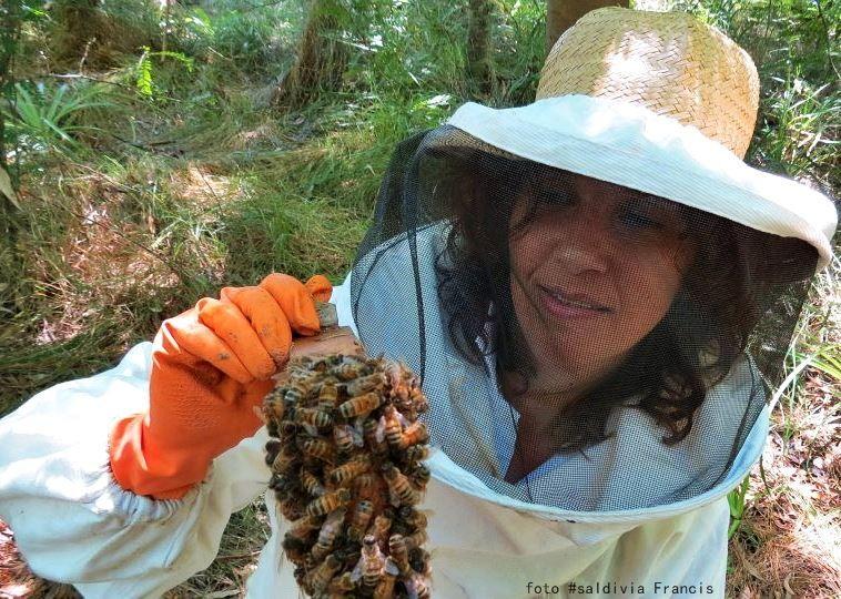 Francis Saldivia, una abeja reina que enjambró. Adios, By, Estoy triste, sniff, sniff  https://www.facebook.com/photo.php?fbid=715433128552581&set=pcb.715435165219044&type=1&theater