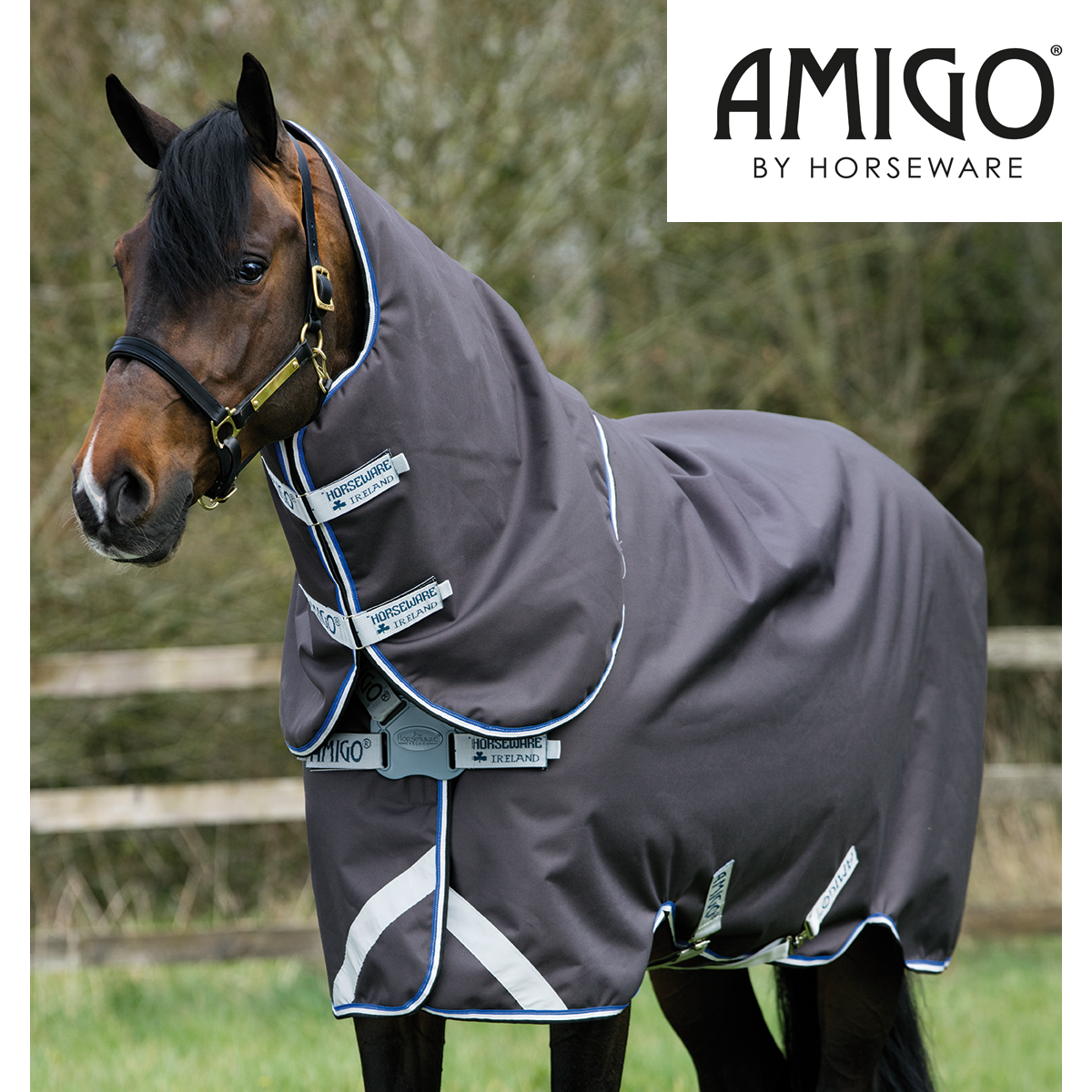 Amigo Fleece Dog Rug: Horseware Amigo Rugs