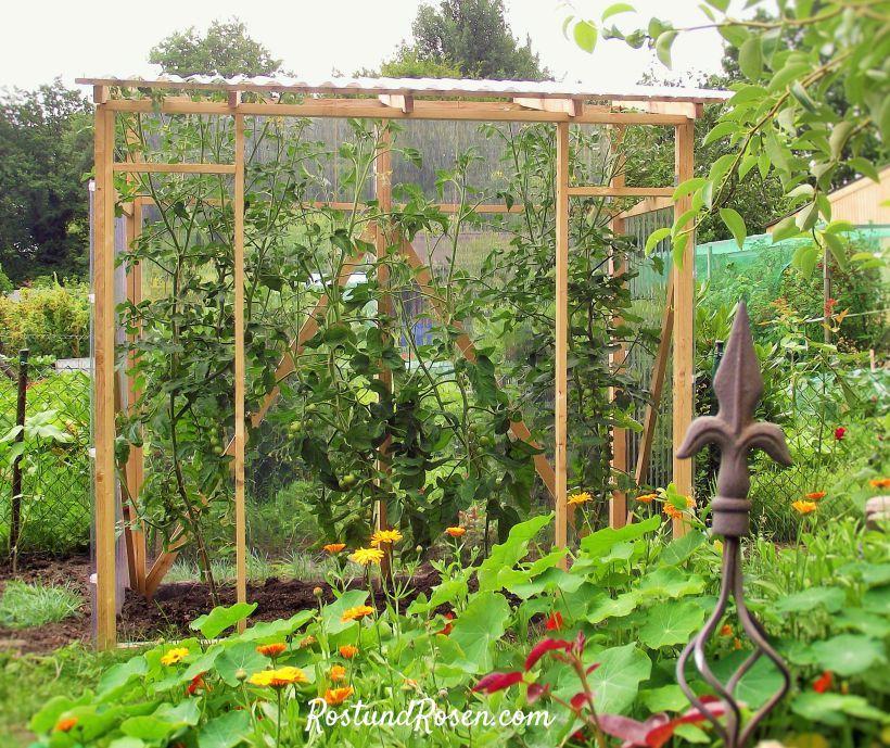 Fancy Mein Tomatenhaus passt in jeden Garten sieht h bsch aus und ist in wenigen Stunden allein aufgebaut hier gibt es Bilder und eine ausf hrliche Anleitung