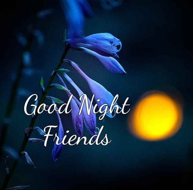 Looking To Wish Your Lovely Friend A Very Very Good Night With