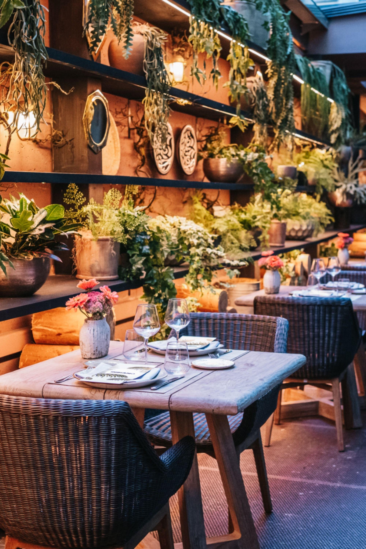 Disfruta De Un Brunch En Familia En La Palmera Del Indiano El Restaurante Revelación De Oviedo Oviedo Hotel De Diseño Hotel