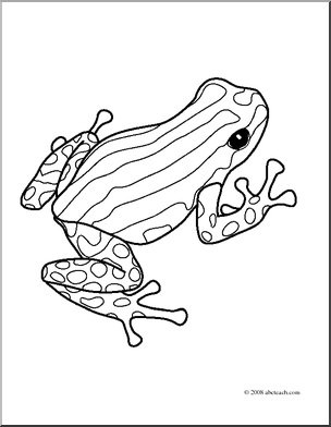 clip art frogs pasco poison dart frog coloring page preview 1