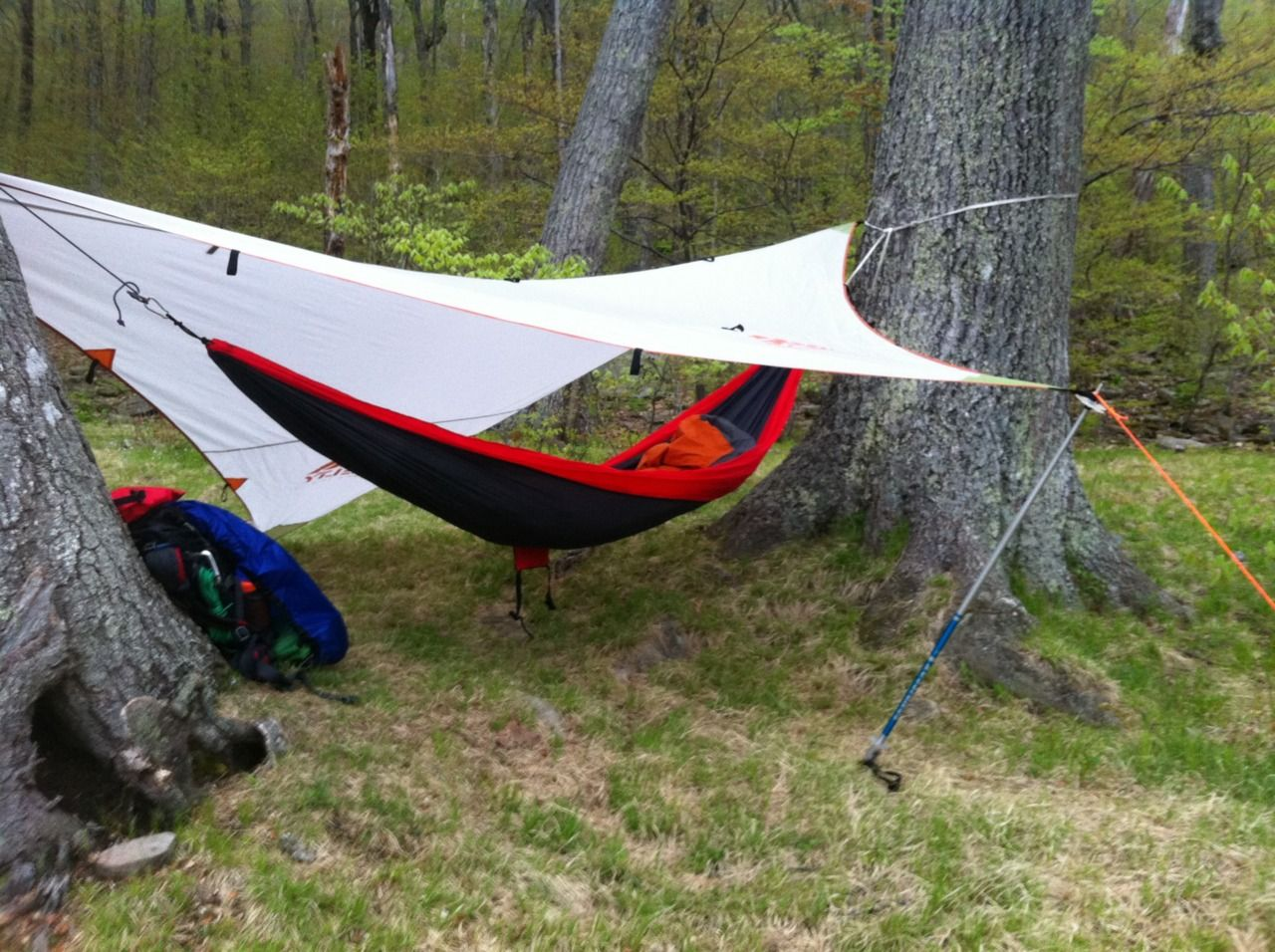 nice hammock rig with extra large asymmetrical tarp  nice hammock rig with extra large asymmetrical tarp    outdoorsman      rh   pinterest