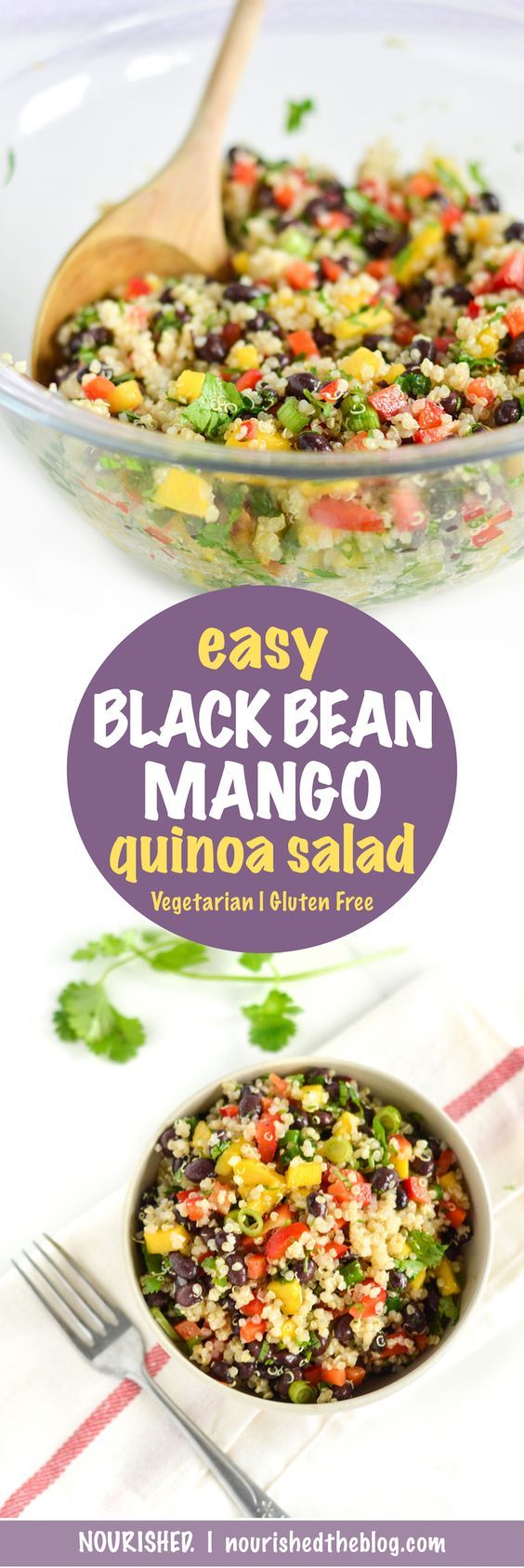 Photo of Crazy Easy Black Bean Mango Quinoa Salad – Always Nourished