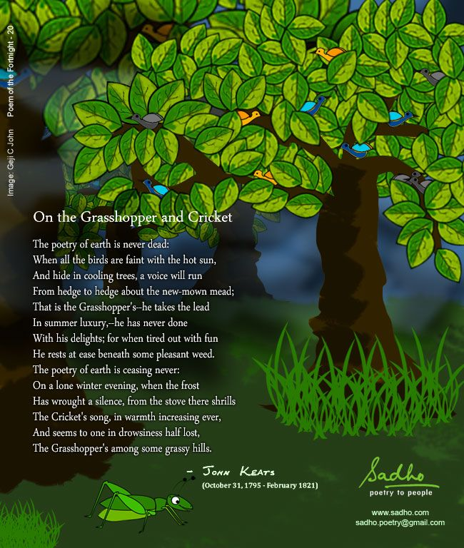 leaves and grasshopper relationship poems