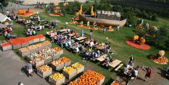 Farm in Switzerland