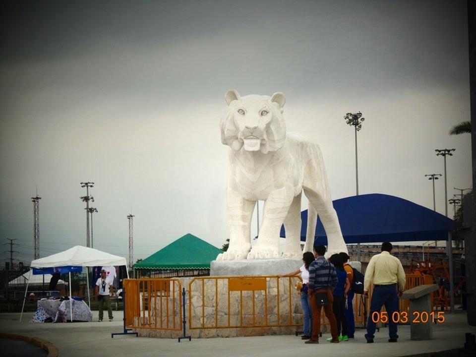 Tigres .. Orgullo Universitario