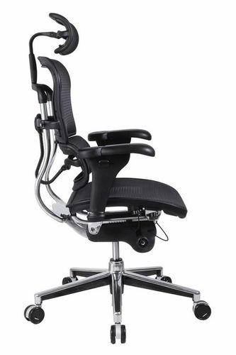 Ergonomic Office Chair With Lumbar Support Home Furniture Design
