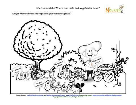 Learning+page+that+teaches+children+where+fruits+and