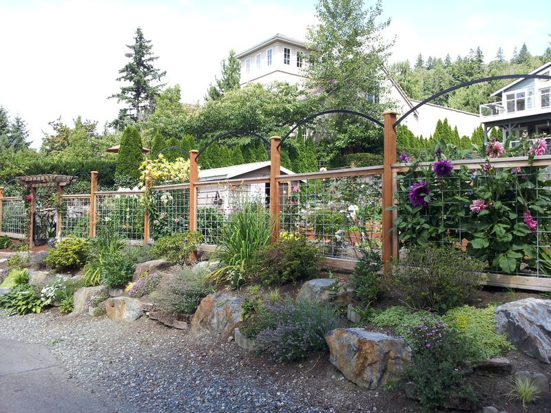 Deer Proof Vegetable Garden Ideas deer fencing for gardens |  island deer fence inspires a fresh