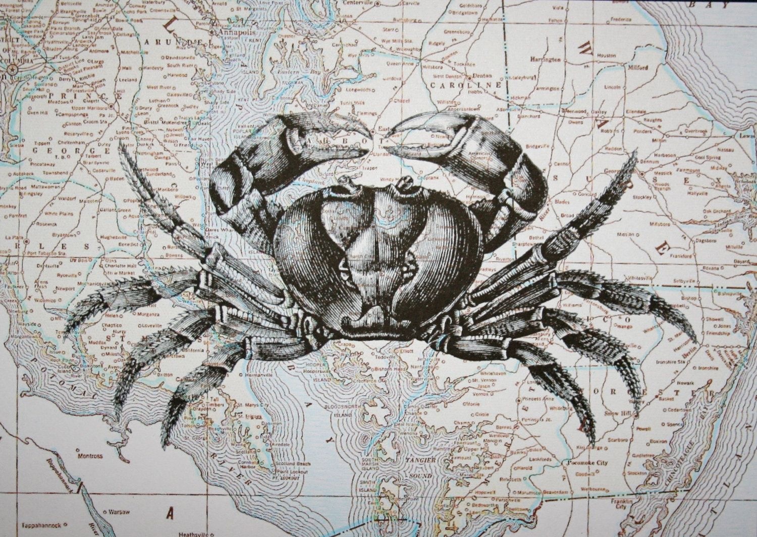 Crab Print on Map of Maryland and Delaware - 5 x 7 Crab and Chesapeake Bay Map Print. $15.00, via Etsy.  guest room