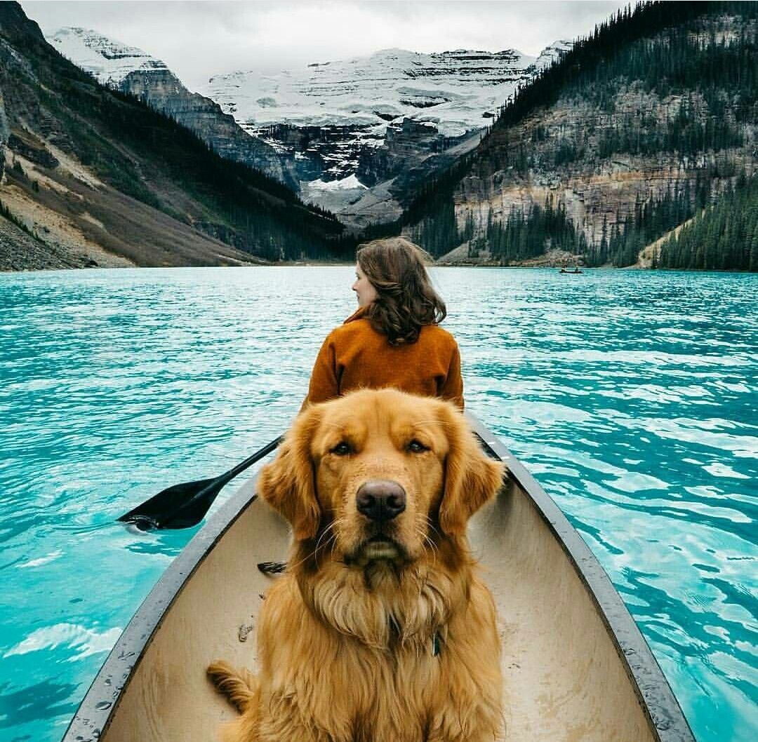 Canoeing with mountain pup