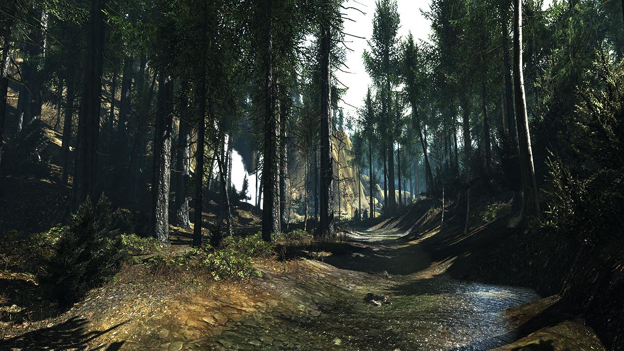 Forêt 3D