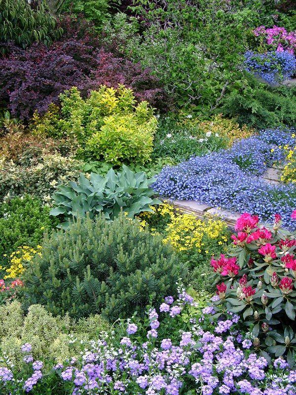 Pin By R Polglaze On The Forgotten Garden Beautiful Flowers Garden Beautiful Gardens Garden Ideas Concrete Blocks
