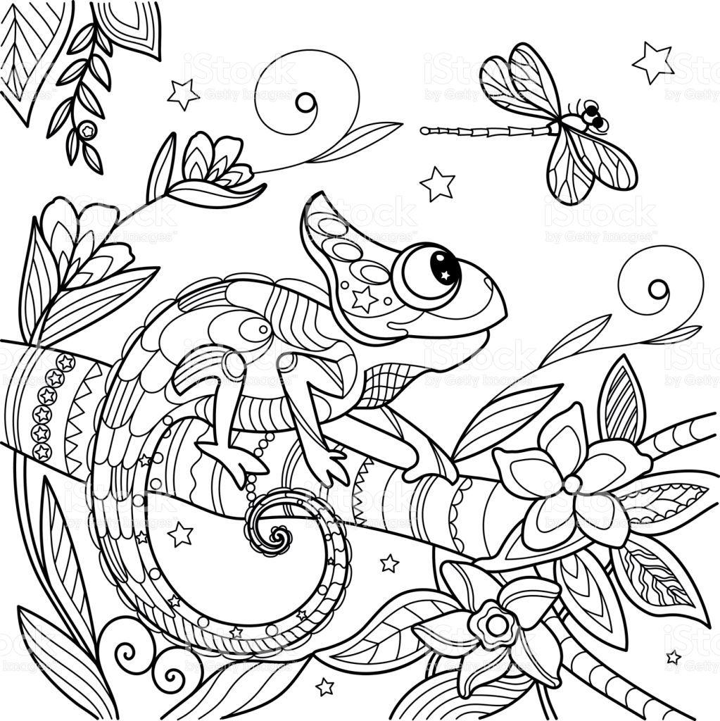 Chameleon Antistress Lizard On A Branch Dragonfly And Stars Vector Malvorlagen Tiere Wenn Du Mal Buch Malbuch Vorlagen