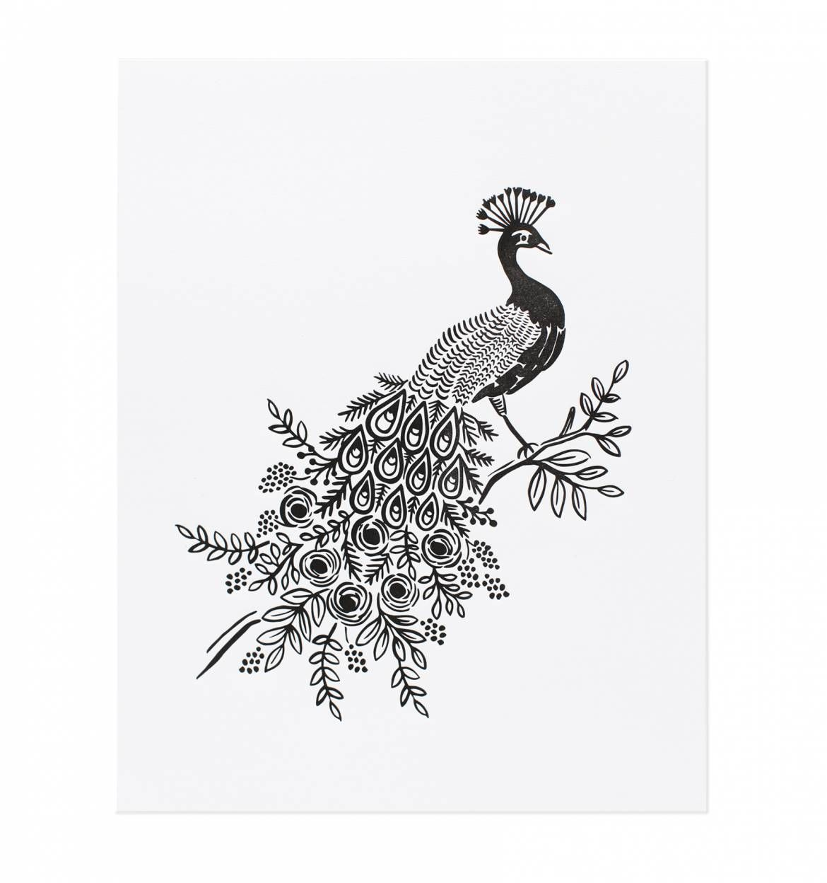 Art Print Black And White Office Art Peacock Special Edition Letterpress Art