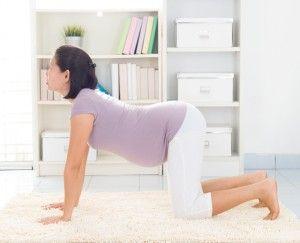 pin on little lotus yoga articles