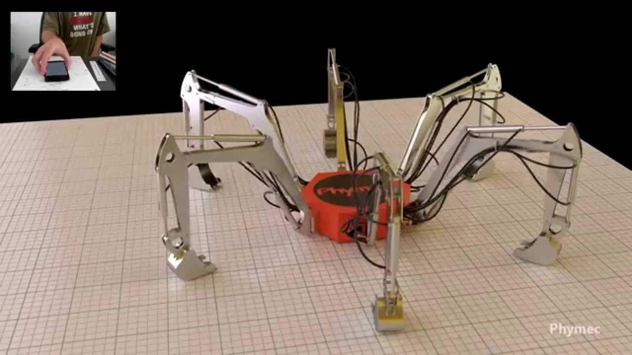 Homemade hydraulic cylinders excavator arms hexapod