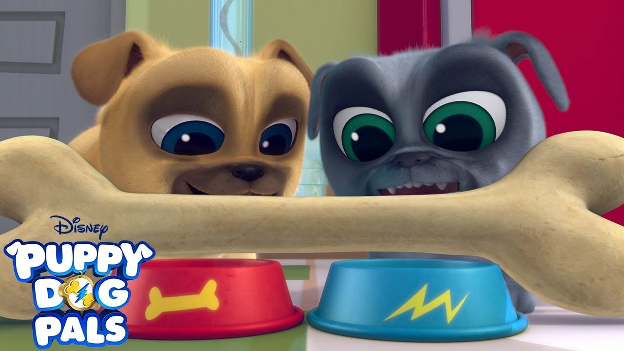 Theme Song Puppy Dog Pals Disney Junior Dogs And Puppies