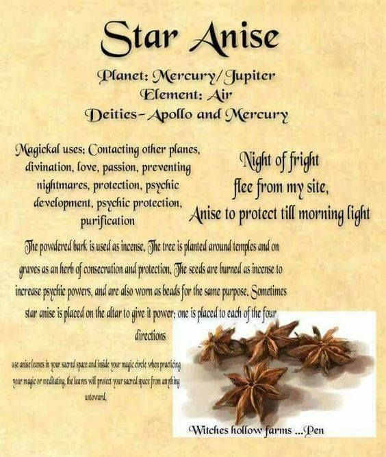 Pin by Olivia Lopez 🤓 on The craft   Witch herbs, Magic
