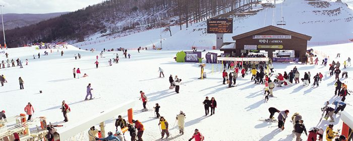 Ski Resorts in Korea   Official Korea Tourism Organization Jeongseon High1 Ski Resort  Located in one of the most pristine regions of Gangwon-do, High1 Resort offers 18 fantastic slopes each beginning at one of three peaks. For beginners, there is a 4.2 kilometer-long gently-sloping course that starts 1,345 meters above sea level. High1 Resort also has two slopes that have been used for World Cup ski competitions, and have facilities for people with disabilities and special needs.