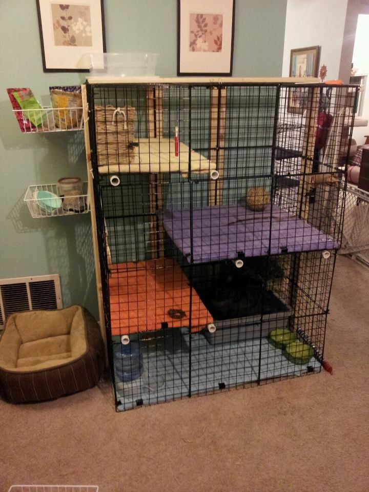 Rabbit Cage: Storage Cubes, Zip Ties, PVC Pipes To Stabilize The Shelves.  Boards To Help Stabilize The Height Of The Cage. The Shelves Are Plywood  That Have ...