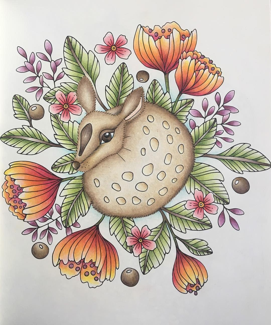191 Likes 9 Comments Rachelle Natural Colourist On Instagram Sagorochsagner Sagorochsagnercoloringbook Wenn Du Mal Buch Instagram Bunte Zeichnungen